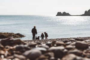 Dog friendly Jersey beaches